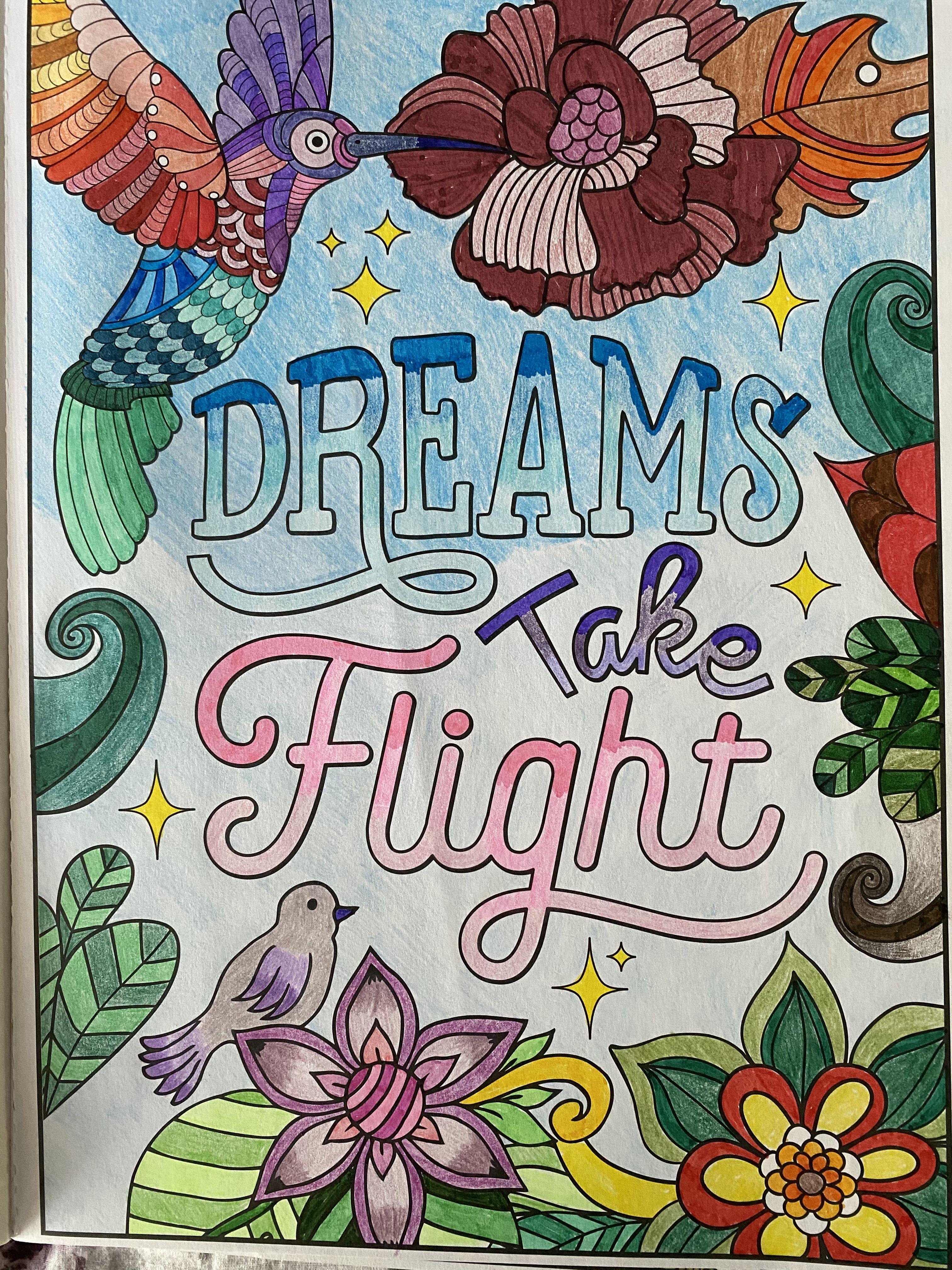 Pin On Dreams Take Flight Coloring Book