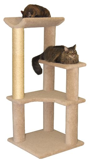 Sweet Deal Cat Tree Crazycatcondos Com For The Fur Pinterest