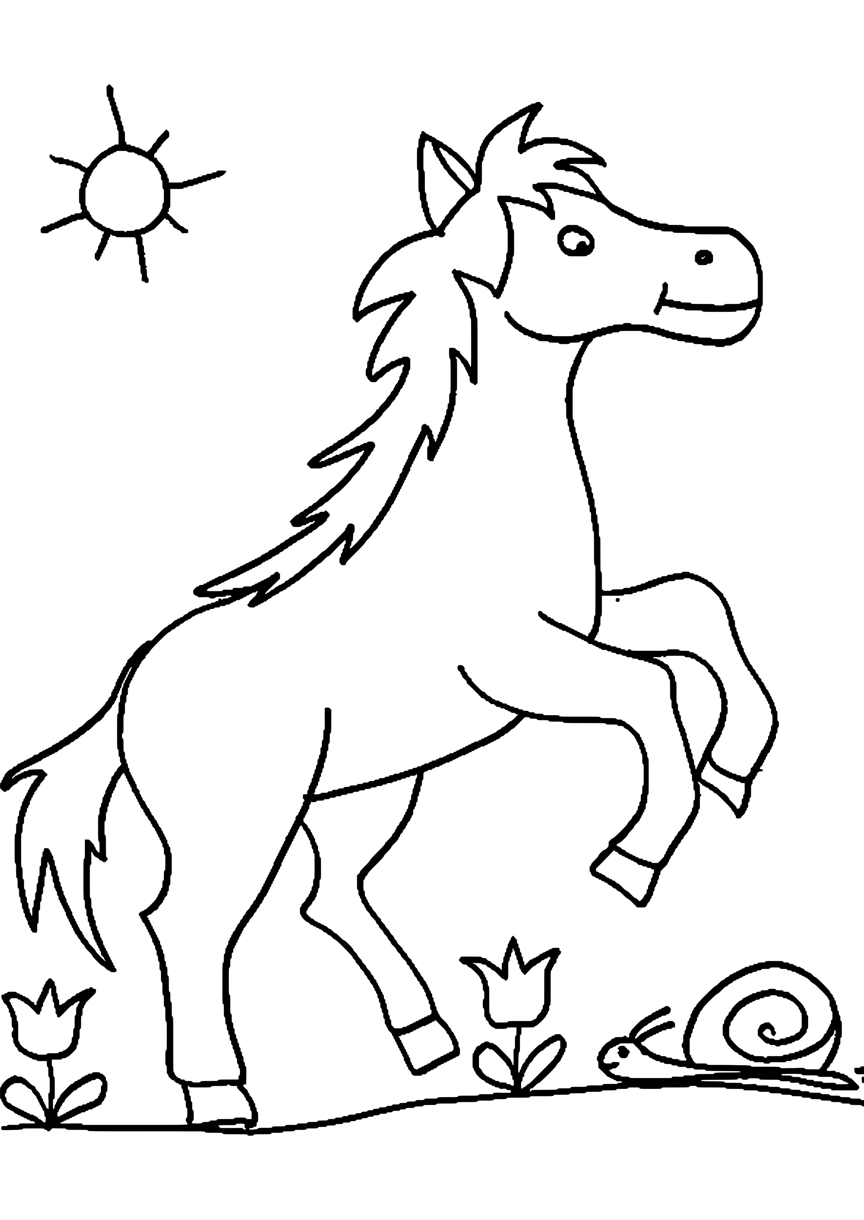Ausmalbilder Kostenlos Ausdrucken Pferde  Ausmalbilder pferde