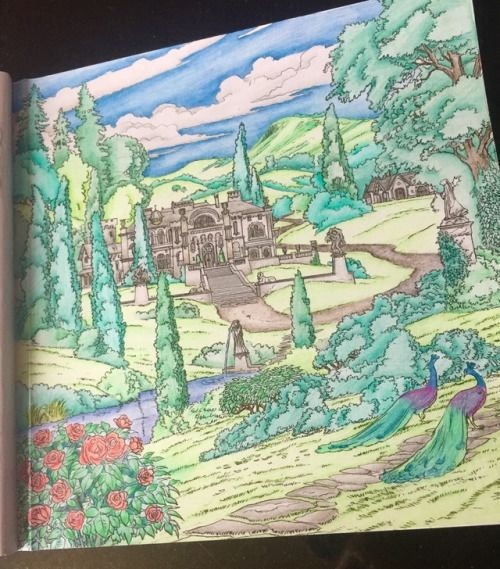 Spring Court From A Court Of Thorns And Roses Coloring Book With