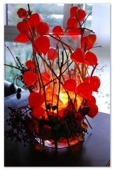 diy herbstdekoration windlicht naturmaterialien lampionblume basteln pinterest. Black Bedroom Furniture Sets. Home Design Ideas