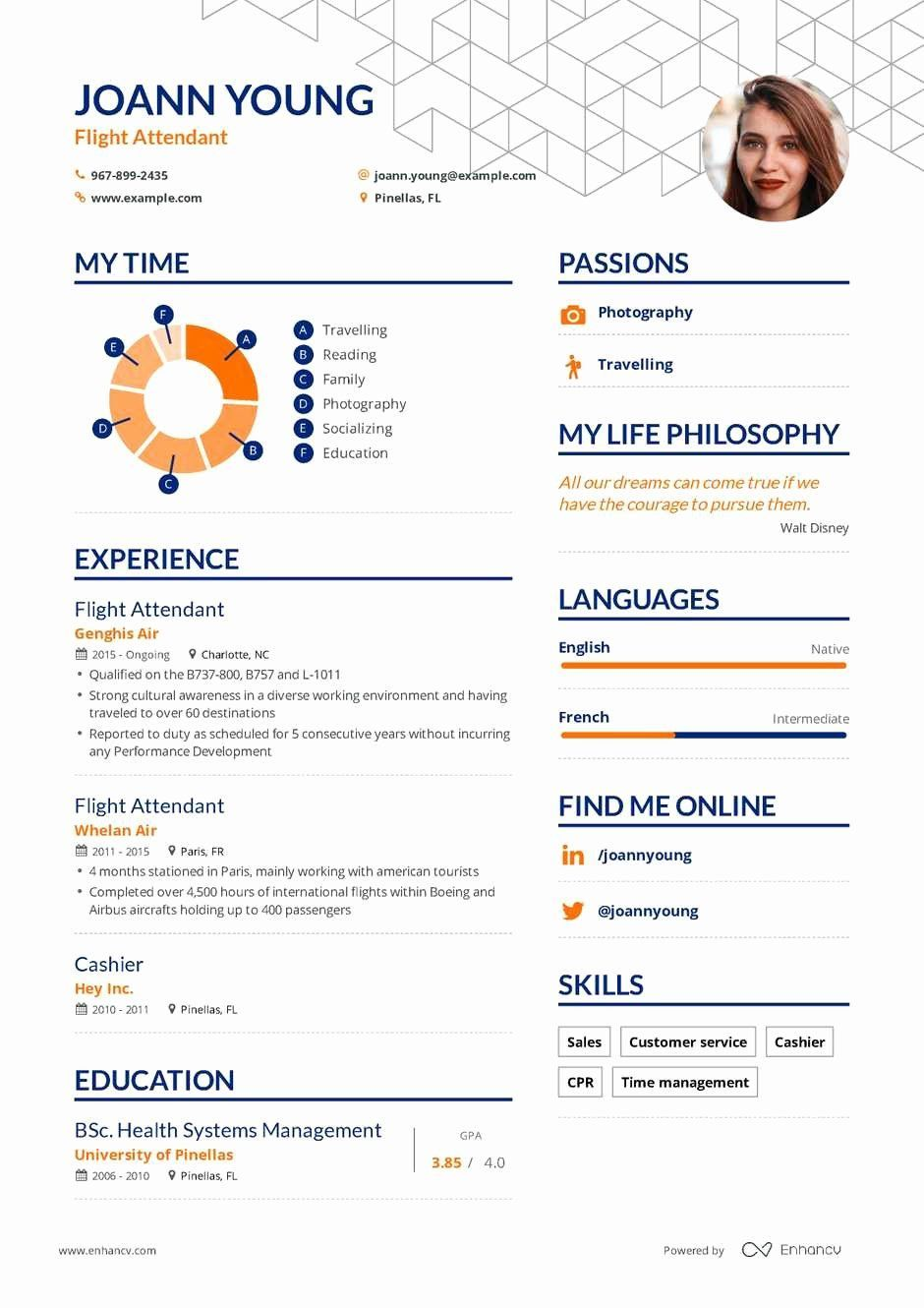 43+ Flight attendant resume template Resume Examples