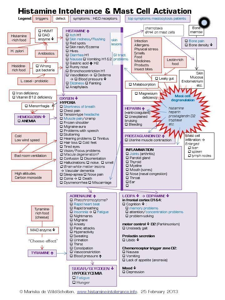Histamine intolerance mast cell activation cascade of