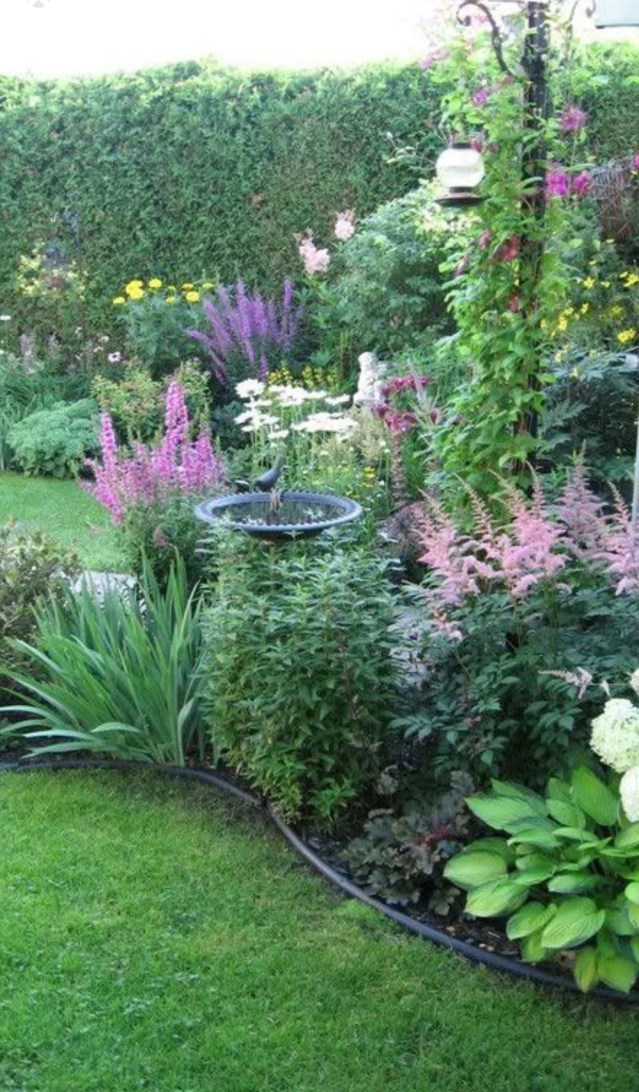 Talls And Lows Different Heights For Interest Need Sun For Such Color Backyard Landscaping Cottage Garden Landscape Design