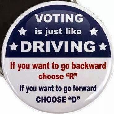 Voting is like Driving