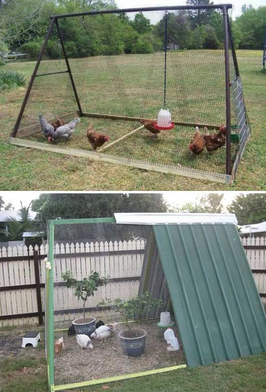 So if you have a little free space, you could consider building a chicken  coop ... - 22 Low-Budget DIY Backyard Chicken Coop Plans Backyard Chickens