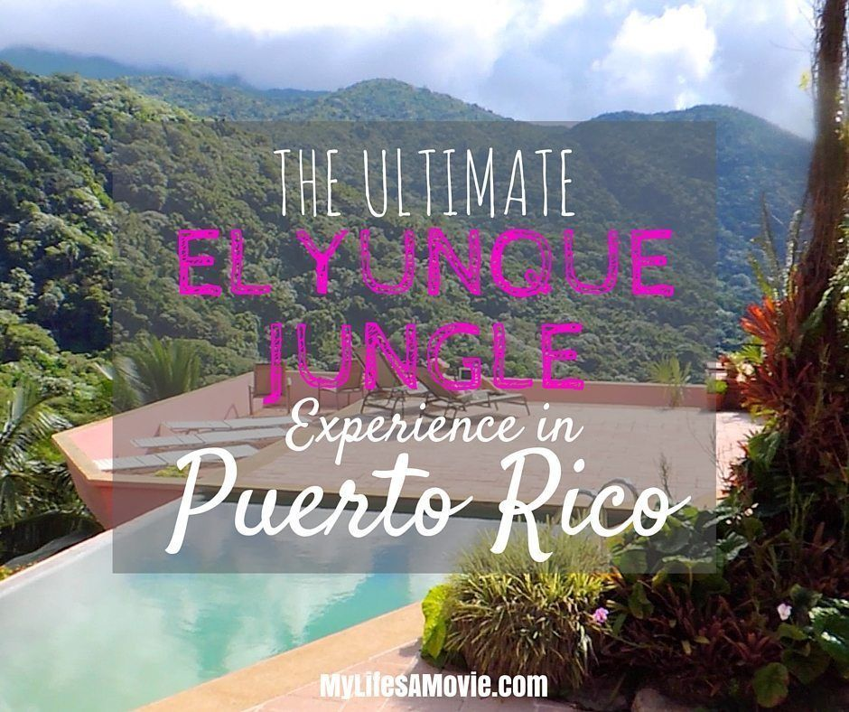 The Ultimate El Yunque Jungle Experience In Puerto Rico Puerto Rico El Yunque Rainforest Puerto Rico Vacation