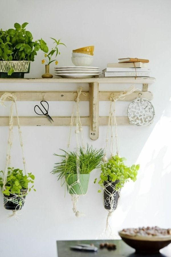 Hanging Houseplants Deco Ideas Es Wood Shelf Hook Potted Plants