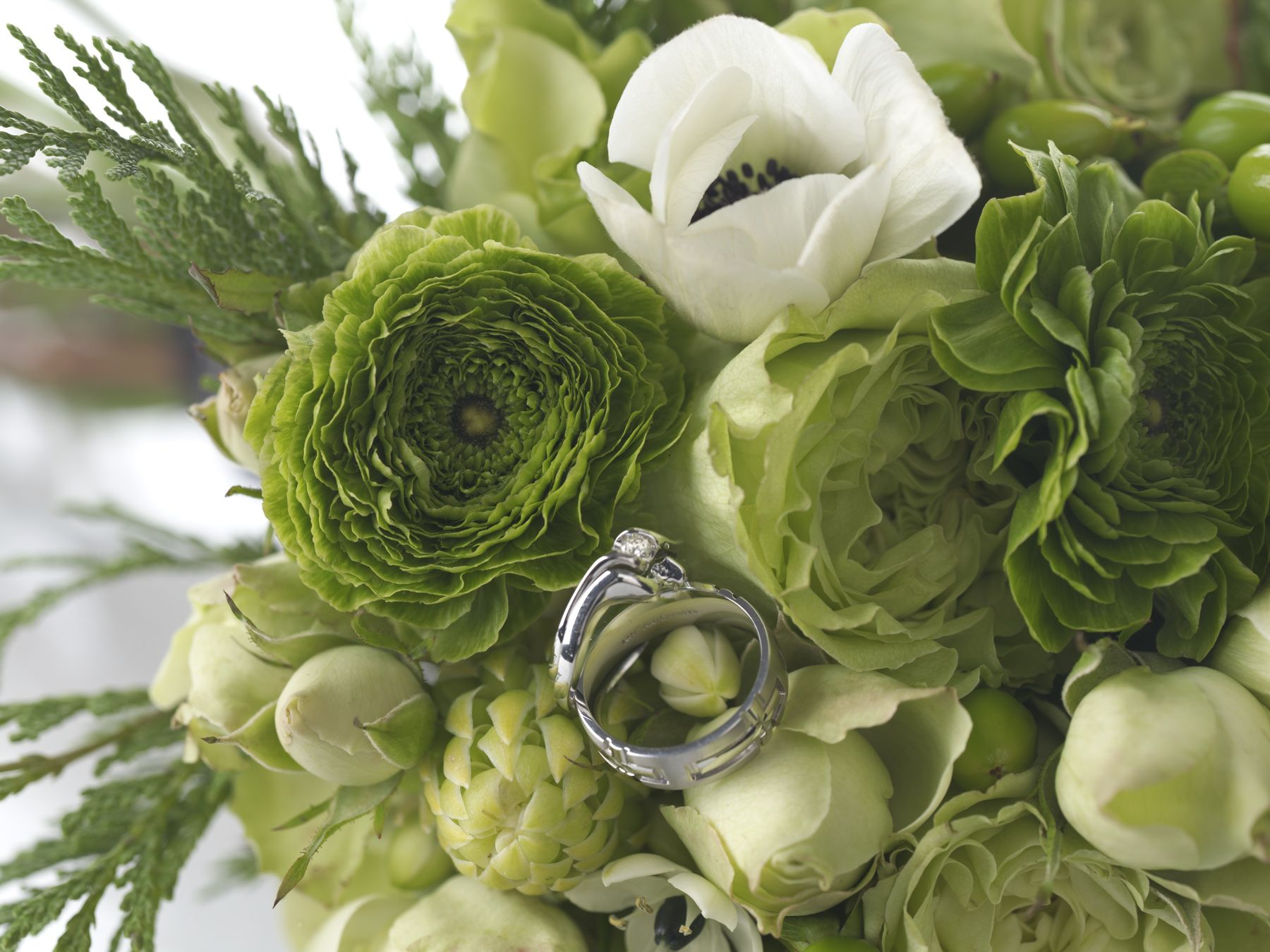 wallpaper wedding com rings hd hands bouquet roses