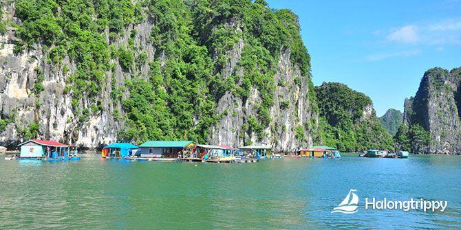 Cap La Fishing Village, Halong Bay