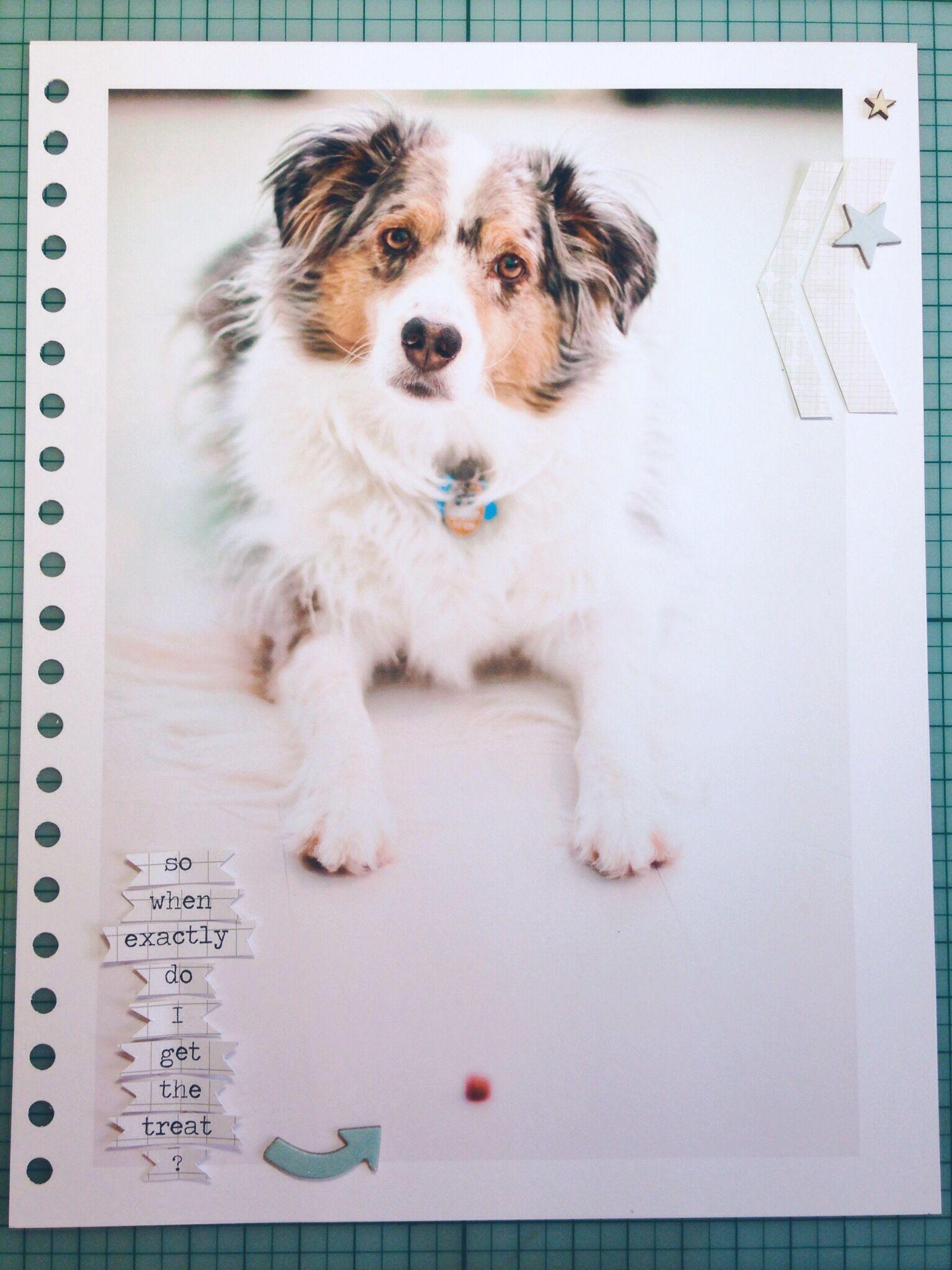 Good boy scrapbook cute