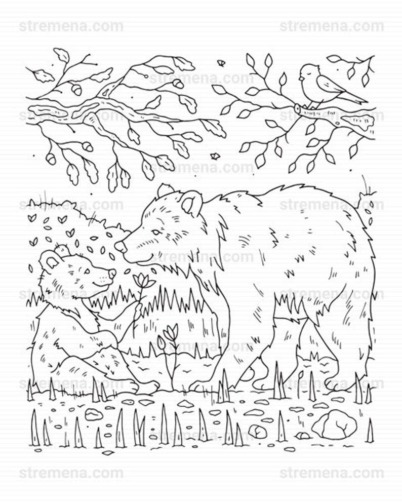 Mother Bear And Baby Bears Printable Coloring Pages Etsy Animal Coloring Pages Coloring Pages Mothers Day Coloring Pages [ 993 x 794 Pixel ]