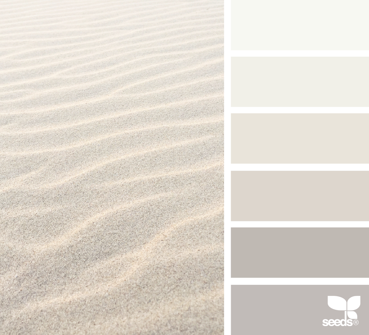 Sand Tones Sand Paint Color Paint Colors For Home Color Palette