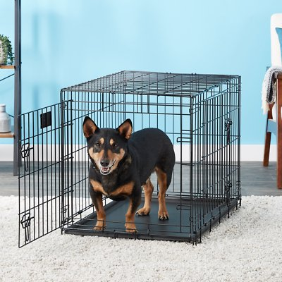 Midwest Lifestages Double Door Collapsible Wire Dog Crate Chewy Free Shipping In 2021 Wire Dog Crates Dog Crate Dogs
