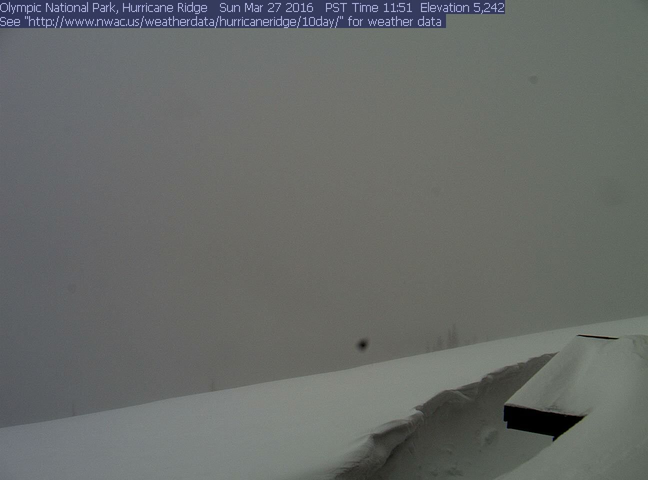 March 27, 2016 Olympic NP View from Hurricane Ridge