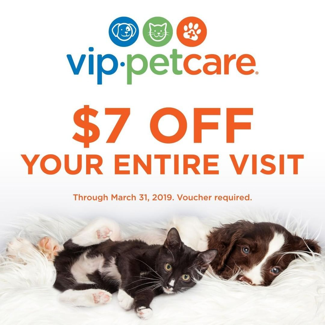 Now Through March 31 2019 Bring Your Pet To Any Vip Petcare Community Clinic Or Wellness Center And Save 7 Off Your Visit Voucher Pet Care Your Pet Vet Tech