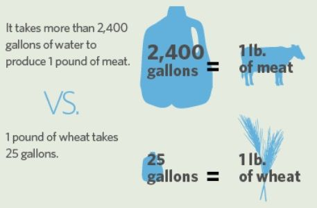 vegan diet water usage