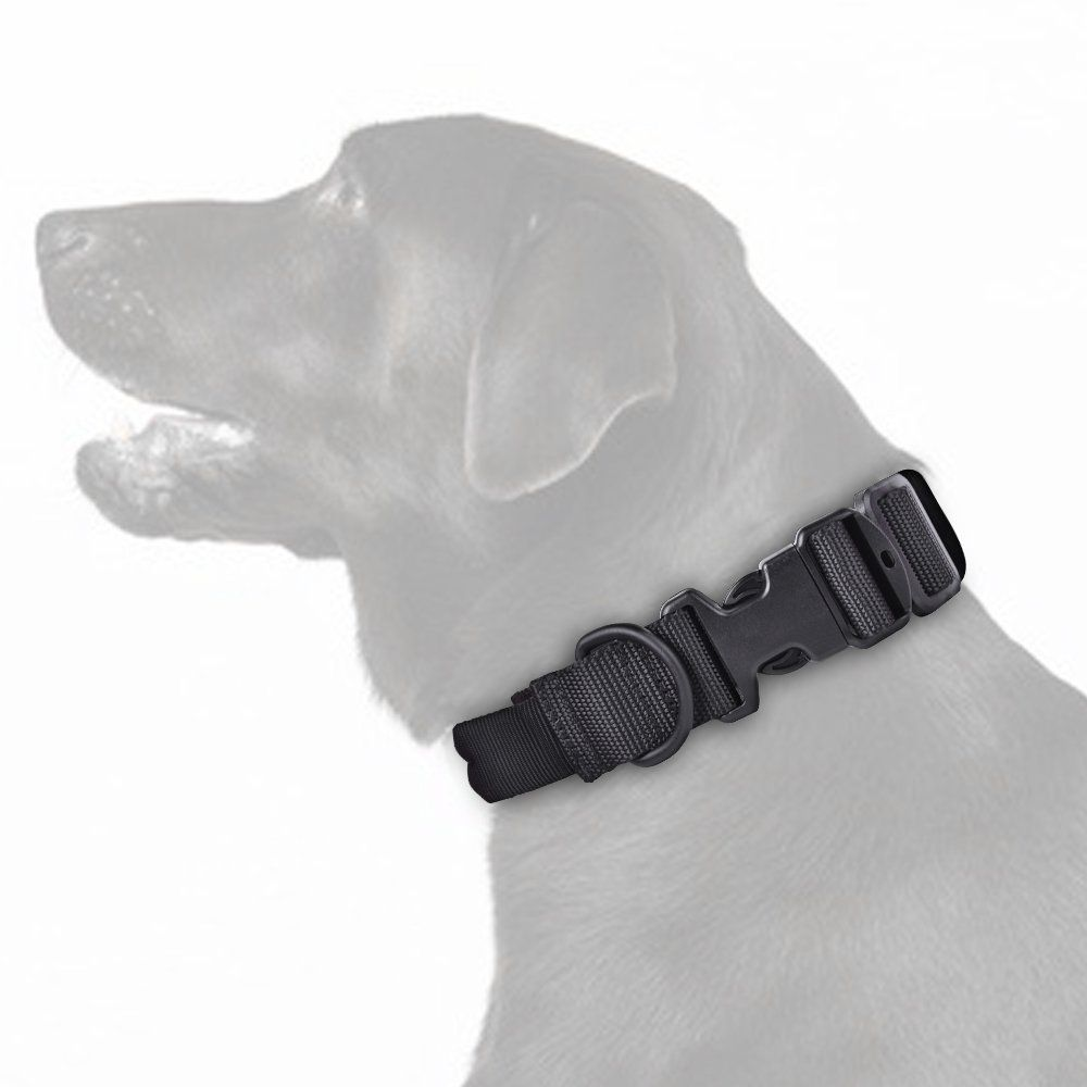 Pin On Dog Collars Harnesses And Leashes
