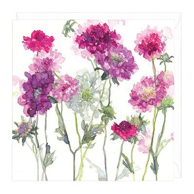 Mixed Scabious Floral Greeting Card