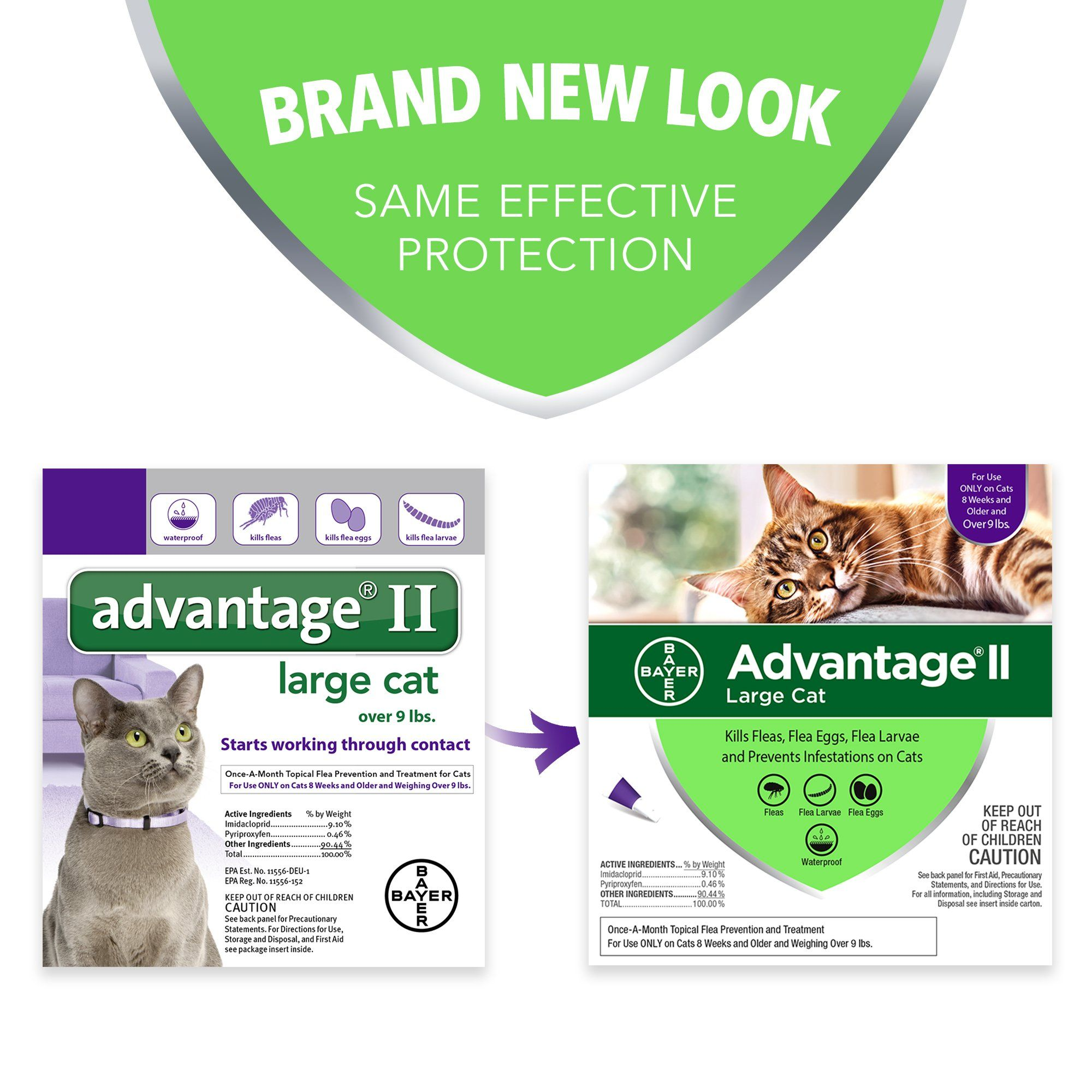 Bayer Advantage Ii For Large Cats Over 9 Lbs 6 Pack More Info Could Be Found At The Image Url This Is An Af Flea Prevention For Cats Flea Treatment Fleas