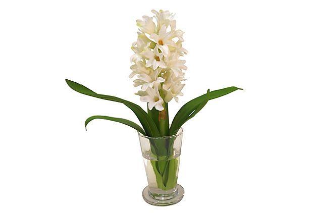 White Hyacinth in Parfait Vase on OneKingsLane.com