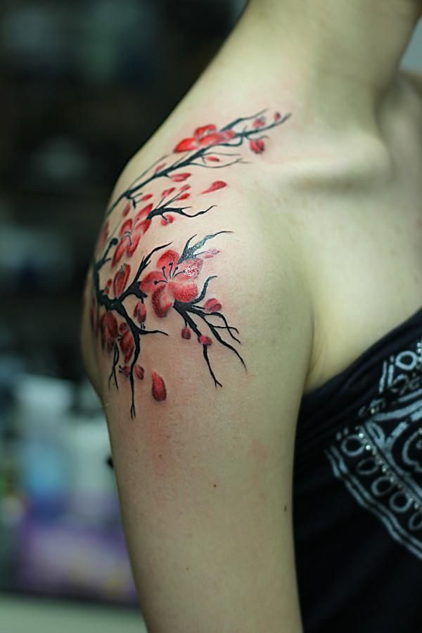 Pin By Mary Riche On Ideas Tattoo Shoulder Tattoos For Women Flower Tattoo Shoulder Shoulder Tattoos