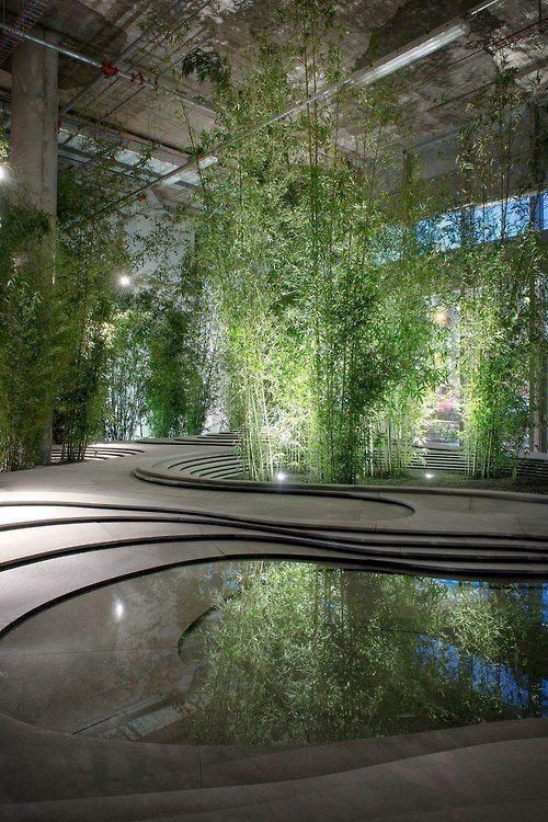 Wintergarten: 120 erstaunliche Fotos, Modelle und Pflanzen #arquitectonico
