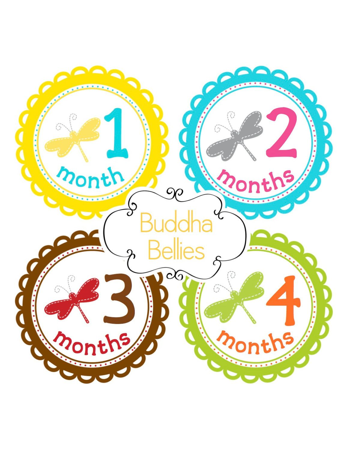 f1e403bf811ef Baby Girl Month Stickers Monthly Baby Stickers Dragonfly Nursery Newborn  Photo Stickers - Baby Decals -