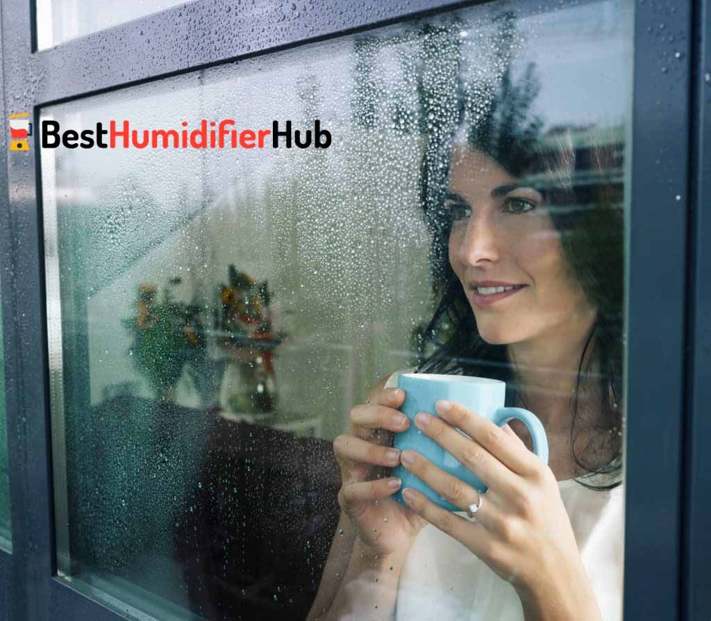 12 Easy Tips On How To Reduce Home Humidity Best