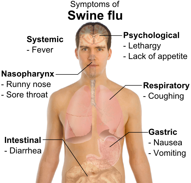 wikiHow to Avoid the Flu at University -- via wikiHow.com - works for travel as well!