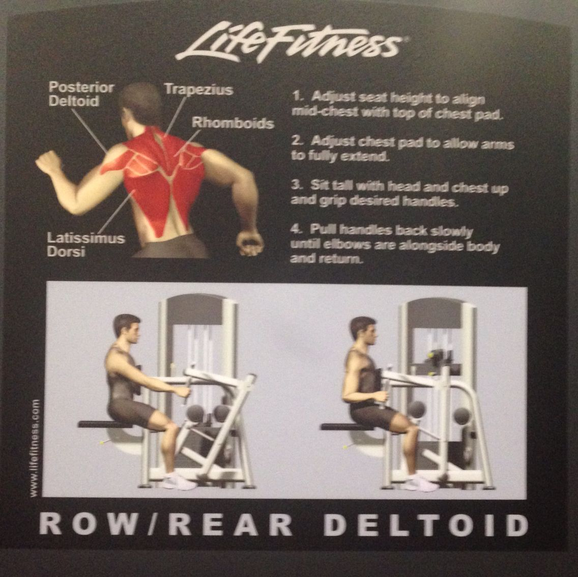 Machine Planet Fitness Workout Get Fit Deltoids