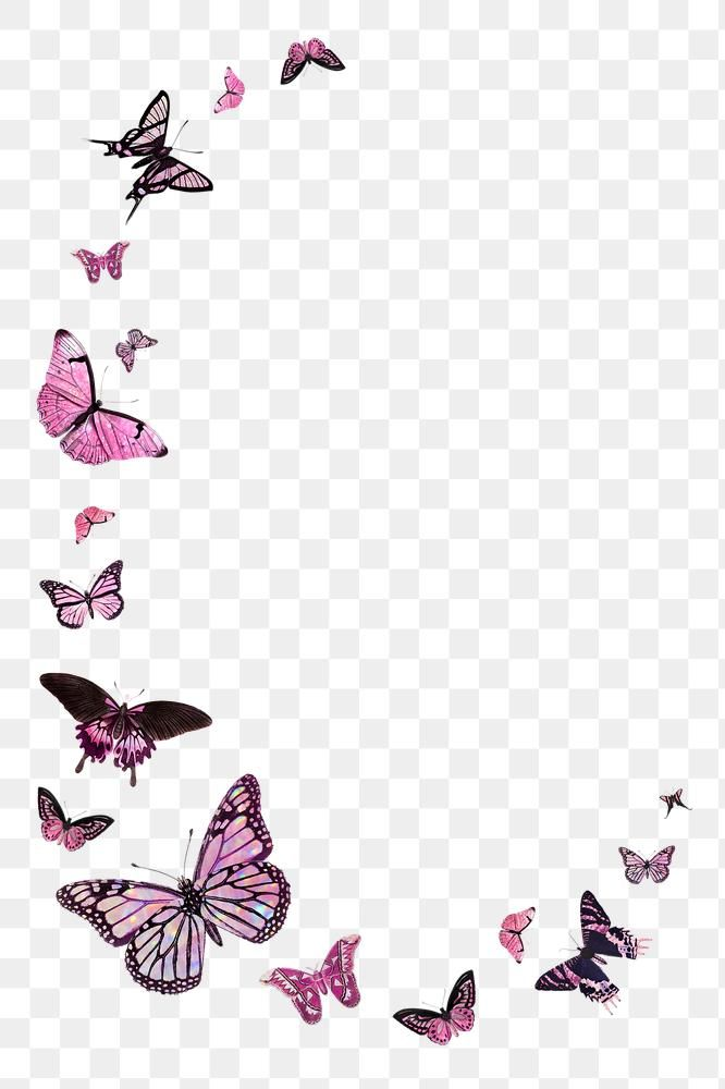 Download free png of Pink butterfly border design element 2366111
