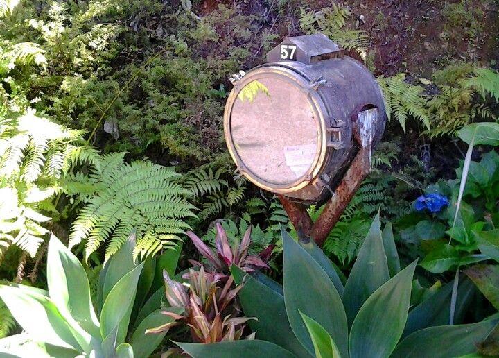 Search light letterbox, Waiheke Island, NZ