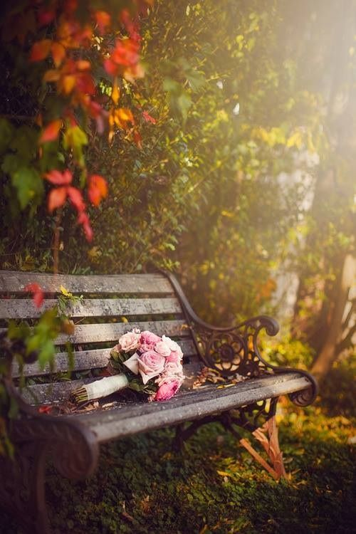 Parks Benches Visit Rose Style Tumblr Com Autumn Scenery