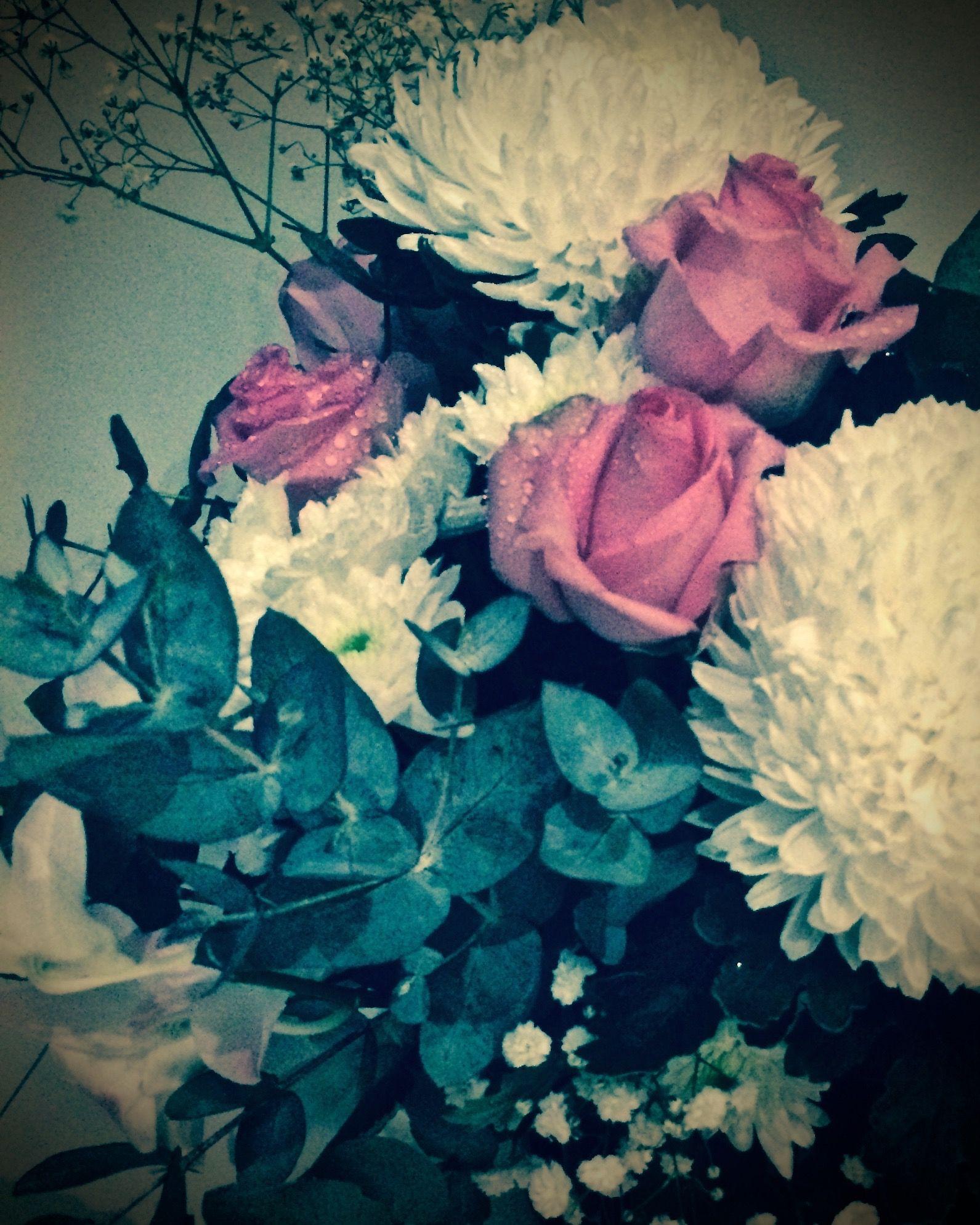Wedding Flowers Perth Pink RosesWhite Chrysanthemum Mum Mimoo