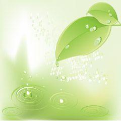 フリーイラスト素材 イラスト 植物 葉っぱ 雫 水滴 波紋 緑色