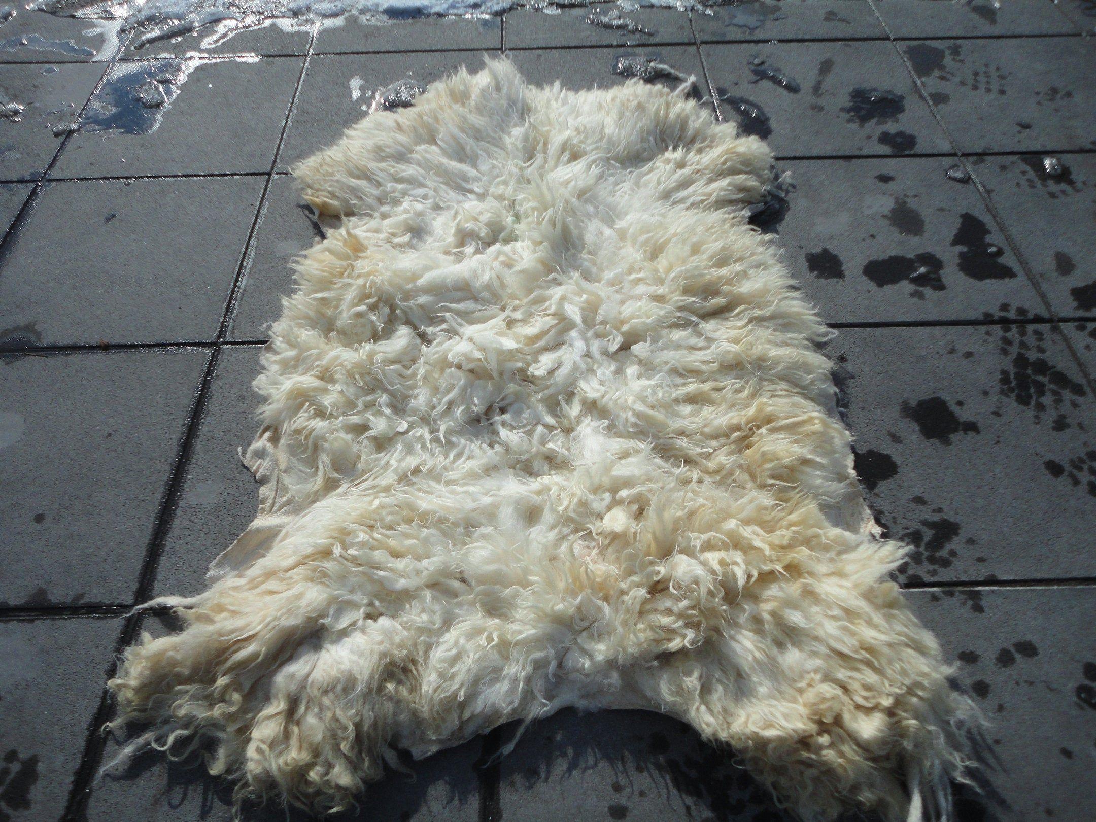 Real Sheep Skin Rug,Natural Animal Hide, Soft Armchair