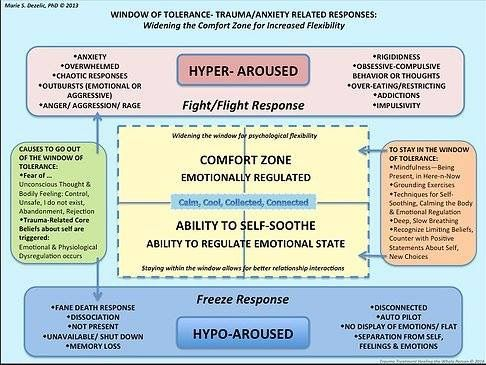 Window of tolerance dan siegel also therapy ideas rh pinterest