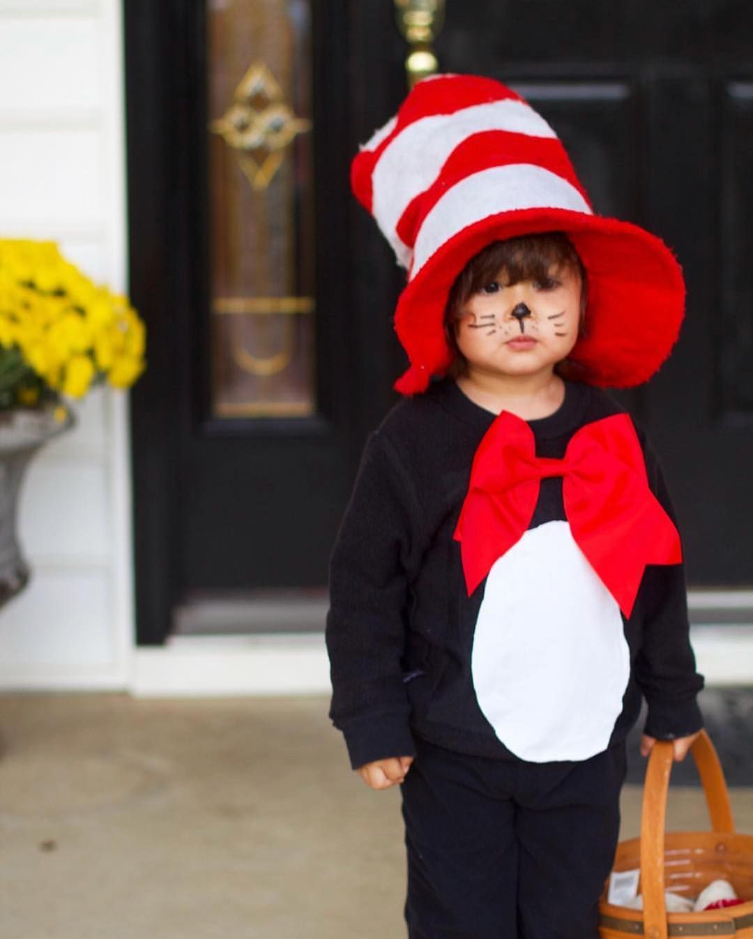 diy cat in the hat costume #catinthehatcostume #halloween