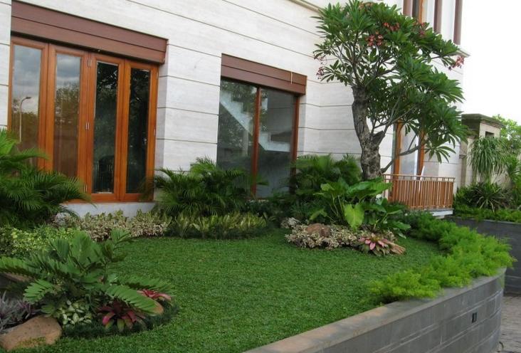 Model Taman Minimalis Di Samping Rumah Landscaping