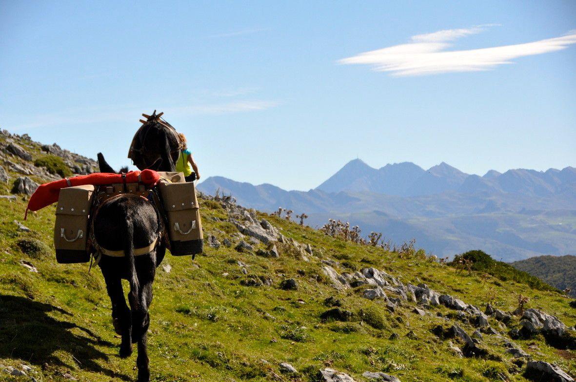 Au loin le pic du midi de bigorre saint p de bigorre hautes pyr n es balades randonn es - Office tourisme hautes pyrenees ...