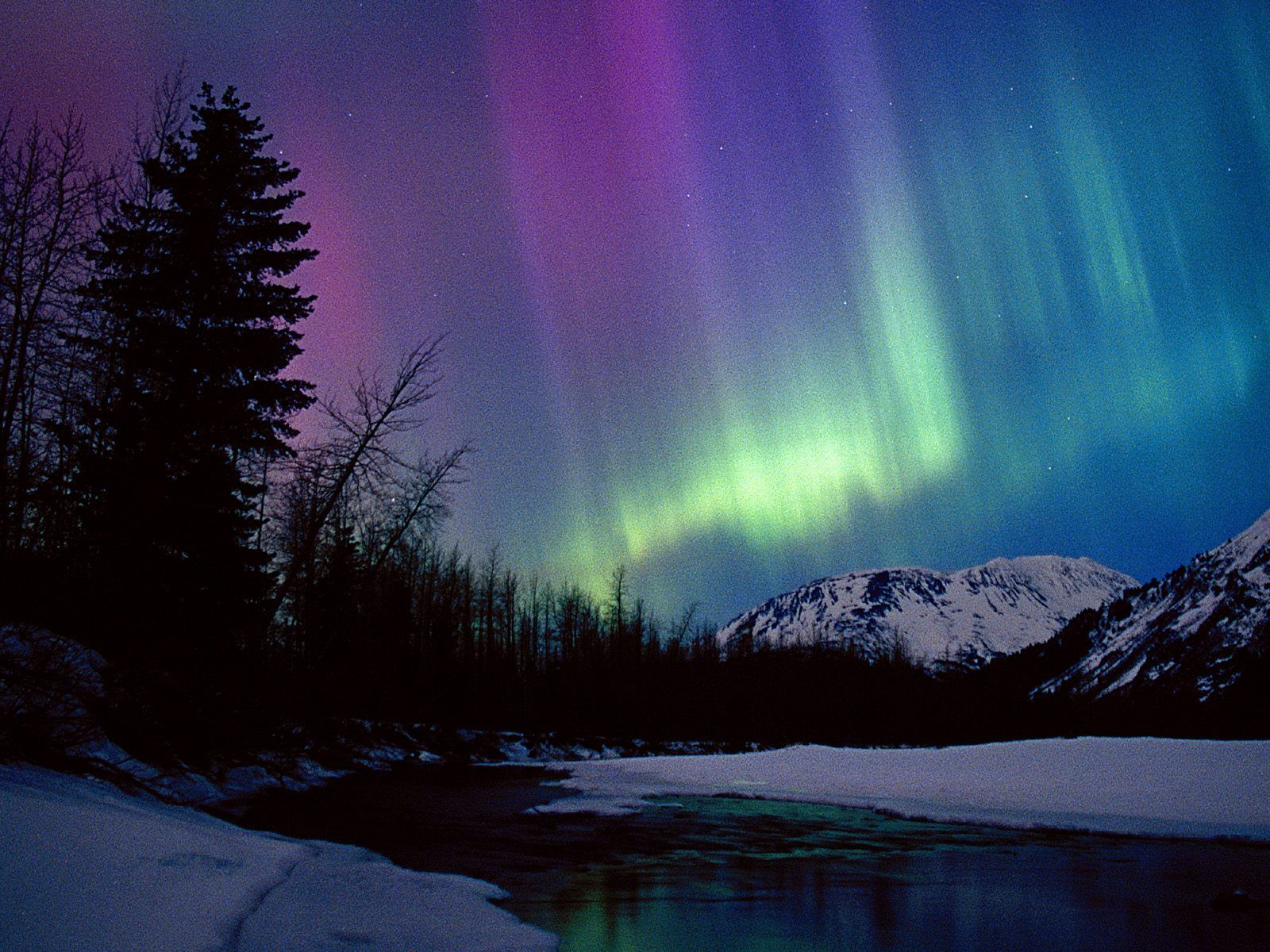 Attractive Northern Lights  Alaska