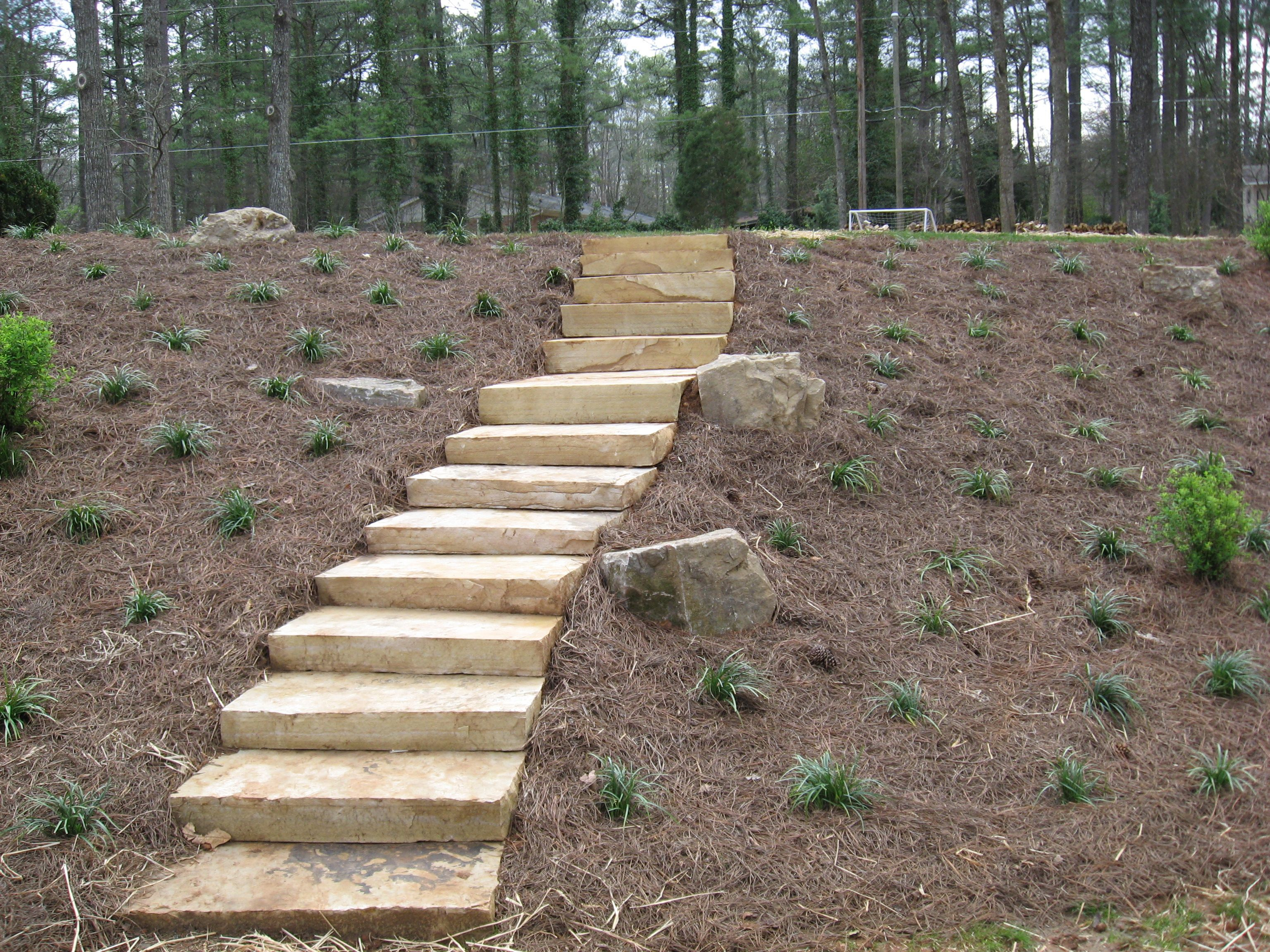 pine straw used to cover a sloped backyard backyards