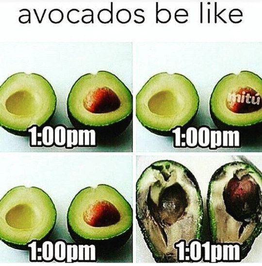 Avocado und Gewichtsverlust