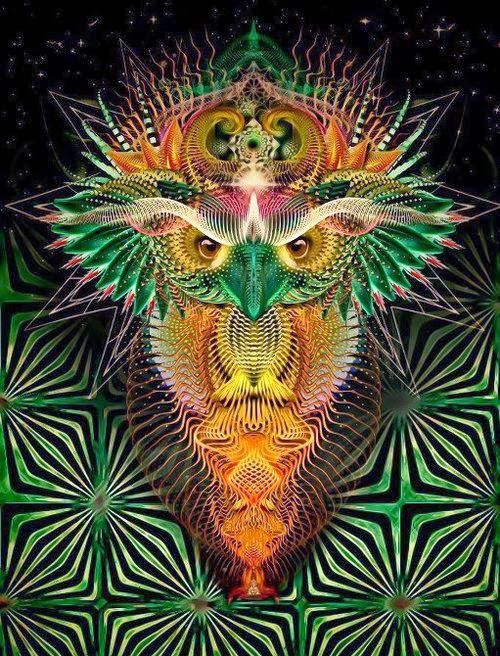 FREE MP3 DJ Mix Downloads - Psychedelic Ambient, Chillout, Psychill