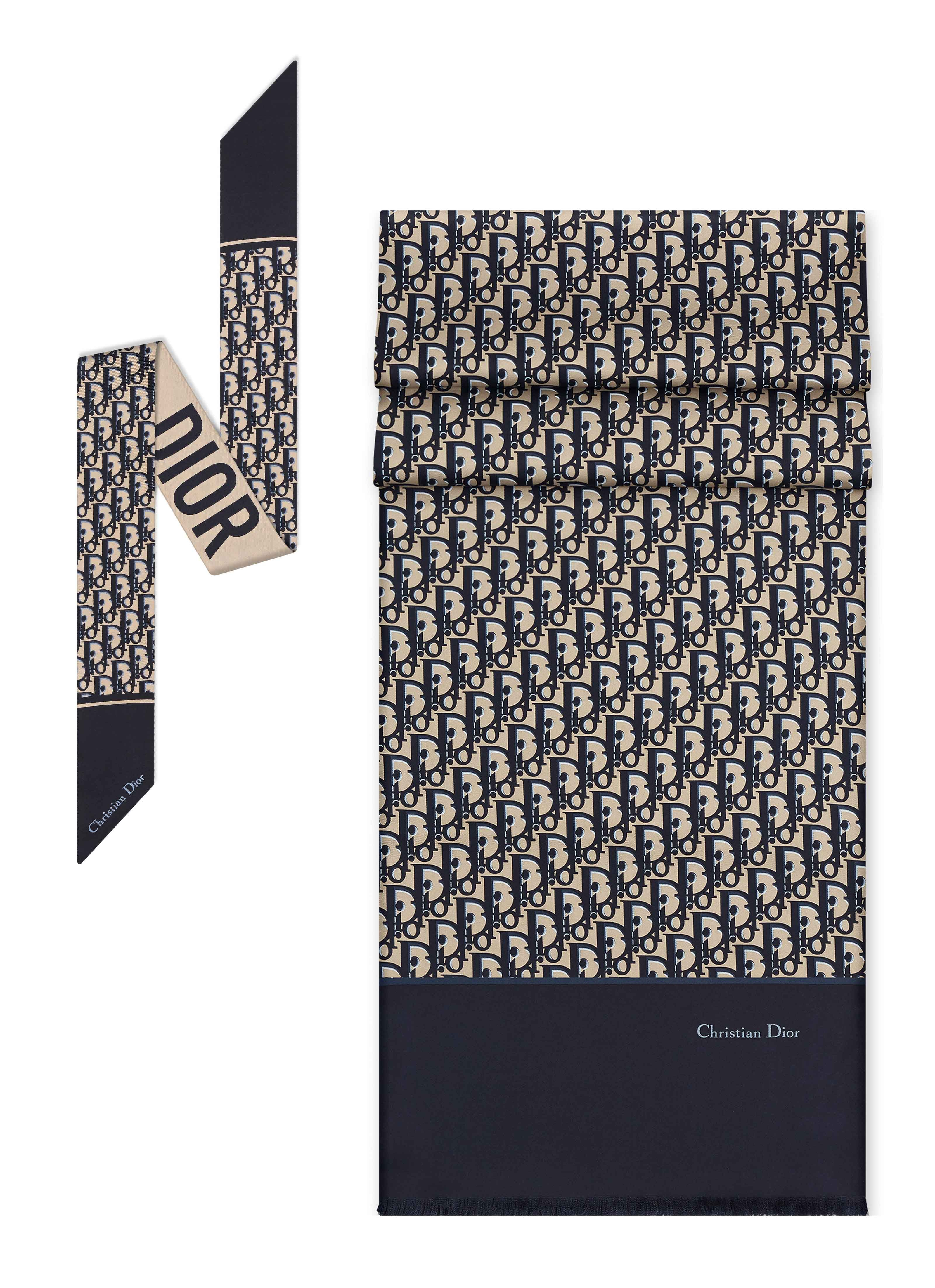 18a4a9a314 Dior Oblique Canvas | Dior | Dior, Canvas, Maria grazia