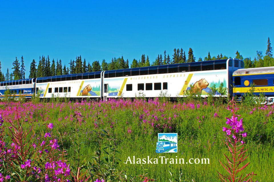 Alaska railroad photos and train pictures alaskatrain