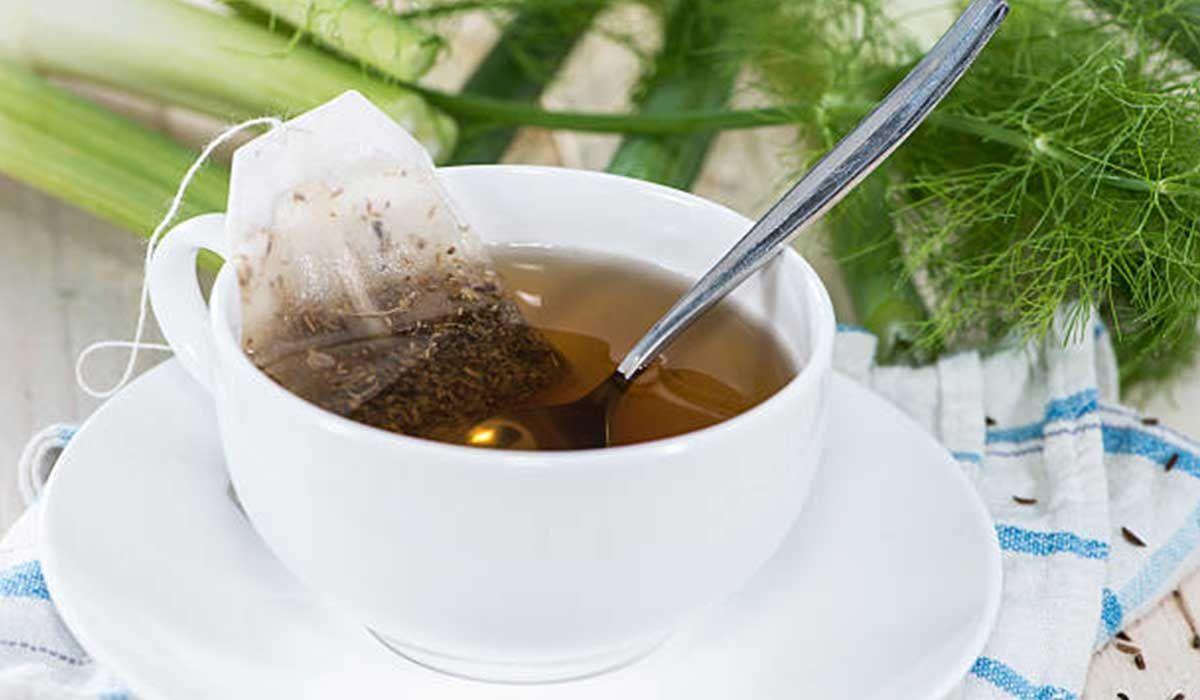 فوائد شرب الشمر بعد الاكل وطرق تحضيره Fennel Tea Tea Fennel