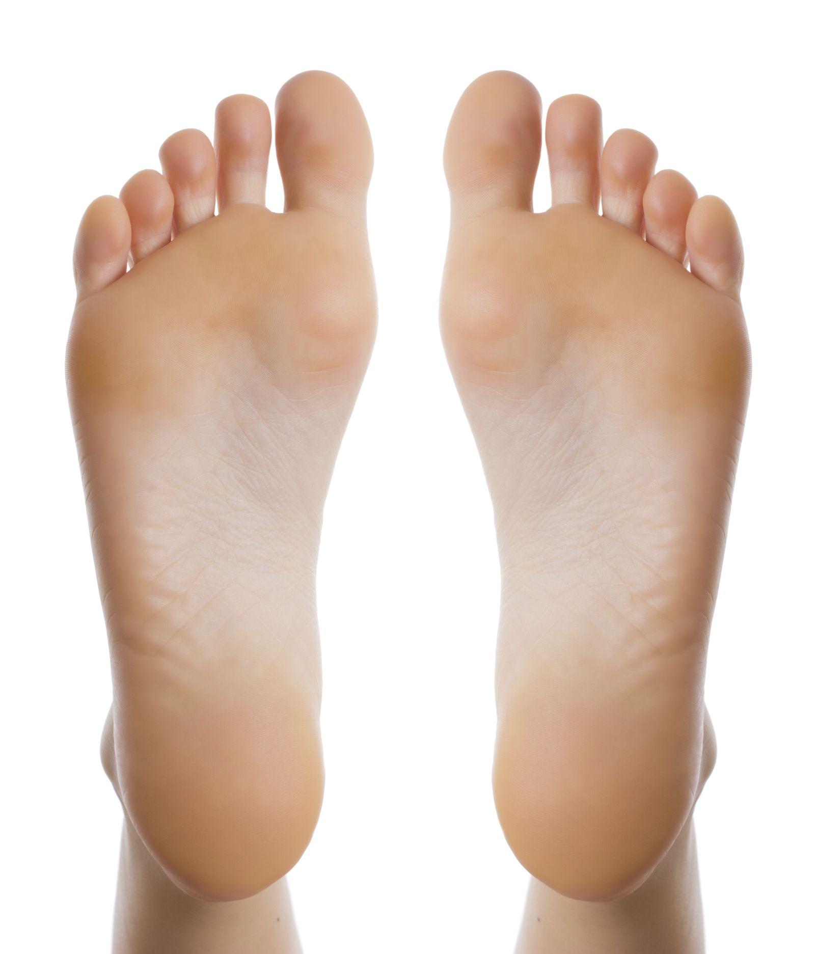 bottom of the feet - Google Search | Pose | Pinterest | Anatomy