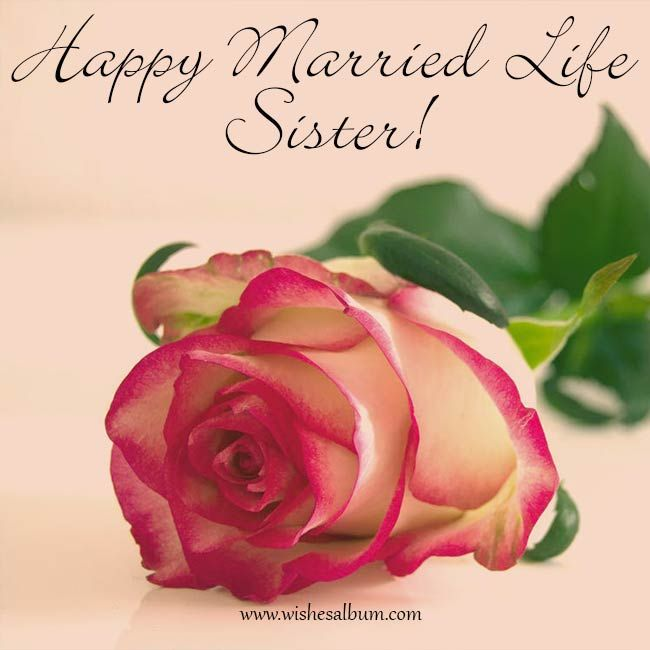 New Married Couple Wishes Quotes: 30 Wedding Wishes For Sister